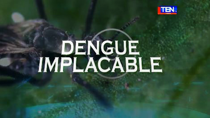 Incontrolable epidemia de dengue